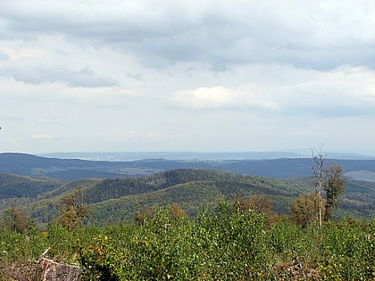 Blick vom Haferberg