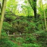 Hilgershäuser Höhle (Hohlstein)