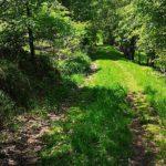 Wanderweg n. Dudenrode
