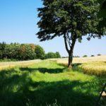 Wanderweg nach Martinhagen