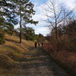 Wanderweg nach Geismar