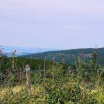 Blick vom Hirschberg nach Kassel