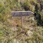 Zur Bank