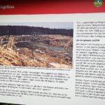 Tagebau am Stellberg