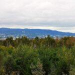 Blick auf Kassel