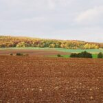 Herbstlandschaft bei Ehrsten