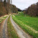 Weg nach Steindorf
