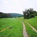 Wanderweg an der Elbe