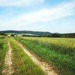 Wanderweg bei Wichdorf