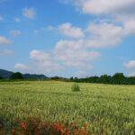 Landschaft bei Ahnatal