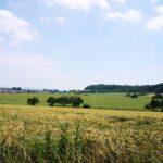 Landschaft bei Harleshausen