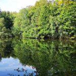 Teich am Wanderweg
